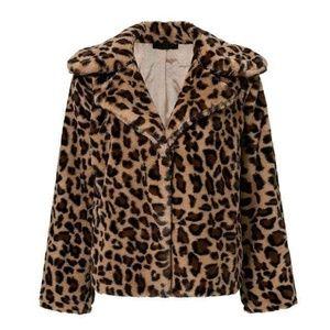 Luv Mint Hearts Boutique Jackets & Coats - Leopard Print Crop Coat